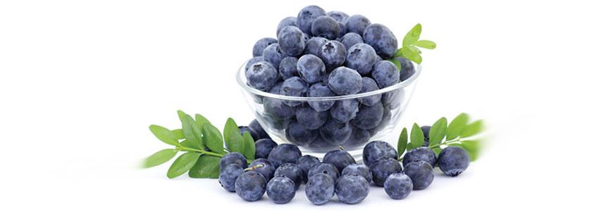 Ăn những thực phẩm chứa nhiều Flavonoid và Rutin có trong quả việt quất